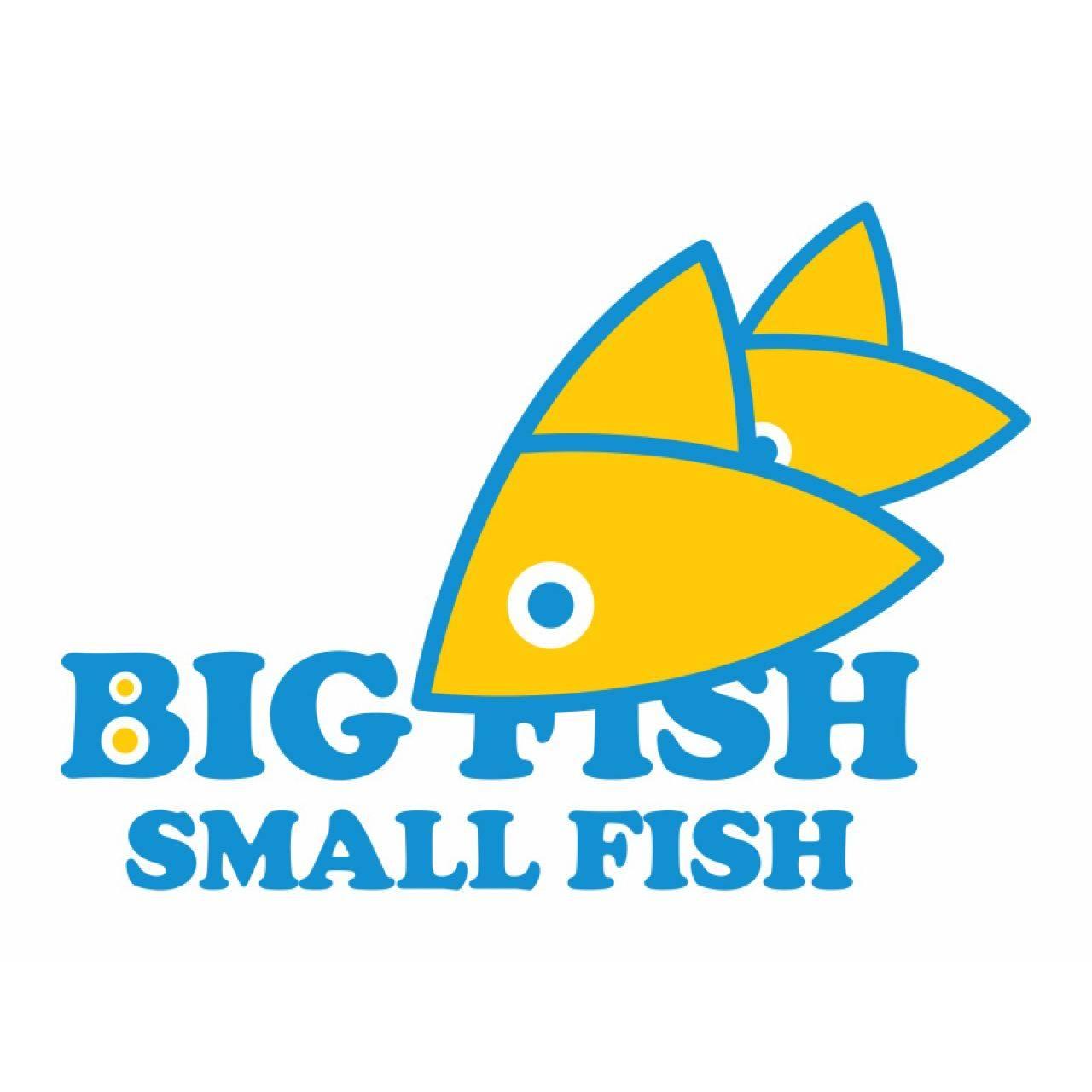 big fish small fish logo