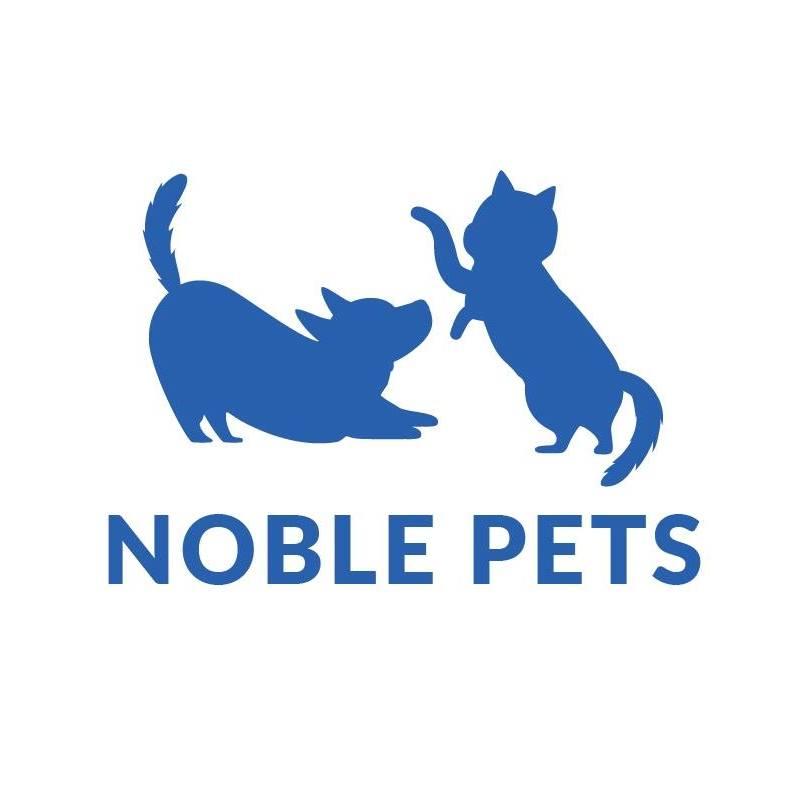 Noble Advance logo
